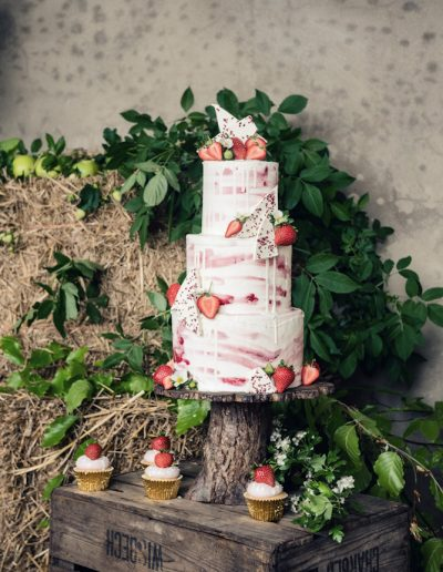 Norwood park newark rustic orchard strawberry wedding -2181